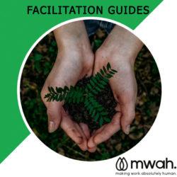 2. Comprehensive Facilitation Guides