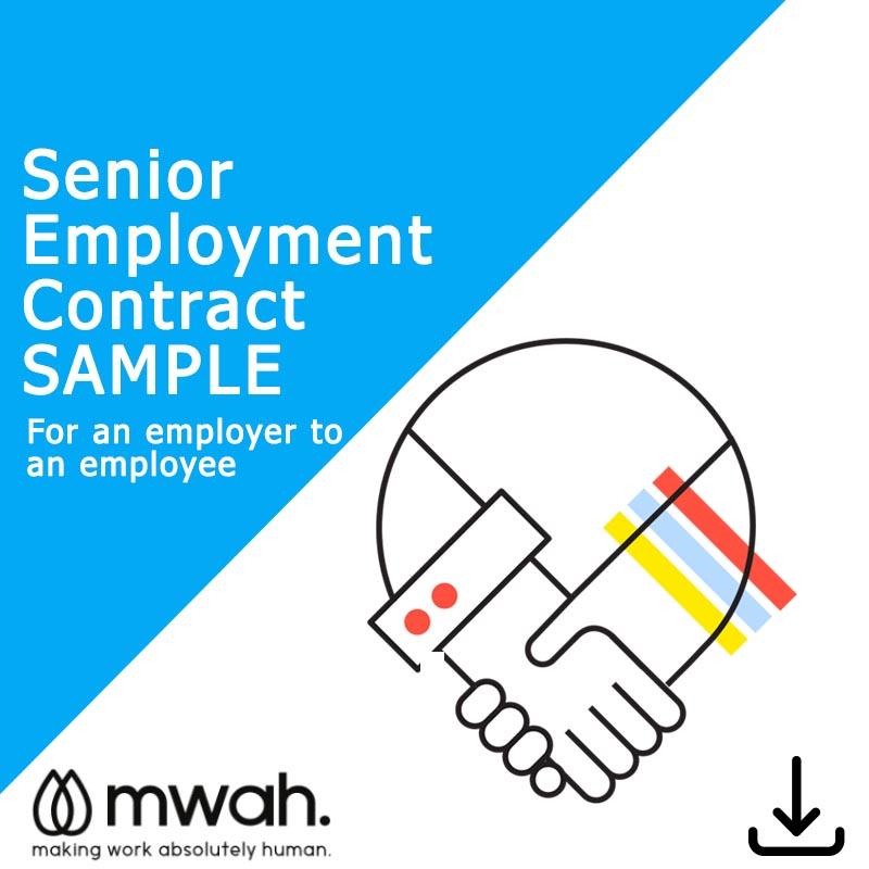 Senior Employment Contract