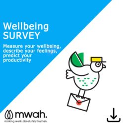 Wellbeing Survey